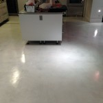 Light hone, extractor cleaning and concrete sealing after